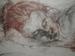 rysunek/akty/martwa natura